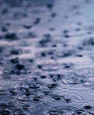 Rain-on-street